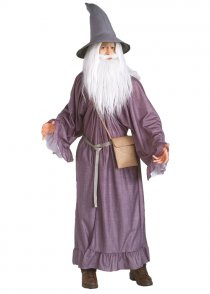 Adult Lord of The Rings Gandalf Costume
