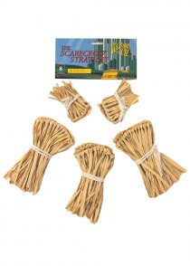 The Wizard of Oz Scarecrow Straw Set