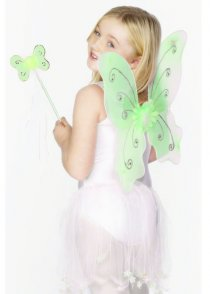 Childs Size Green Fairy Wings and Wand