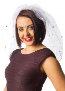 Hen Party White Bride Veil with Gold Stars